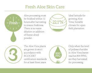 Fresh Aloe Skin Care