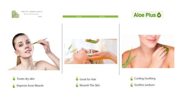 Aloe Plus Benefits